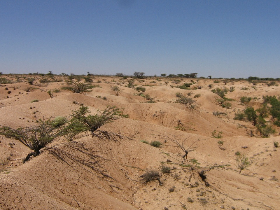 Figure: Bad lands (severe soil erosion) due to land degradation in Northern Somalia